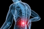 5 Ways Motion Causes Low Back Pain