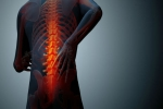 Back Pain: The Scientific Mind Body Guide