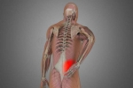 First Aid for Intense Pain from a Pulled Lower Back Muscle